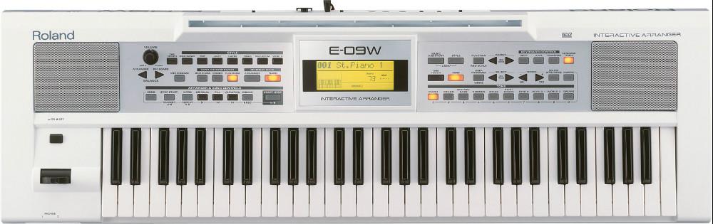 đàn organ roland e-09w