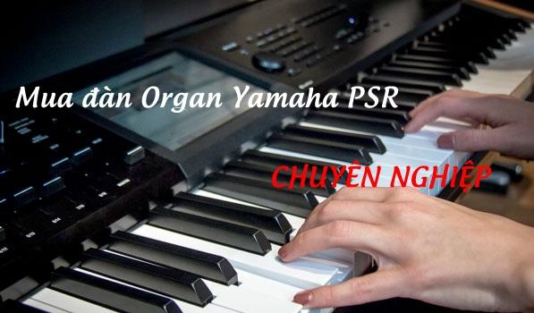 So sánh tính năng đàn Organ Yamaha PSR-S670, PSR-S770, PSR-S970, PSR-A3000 ?