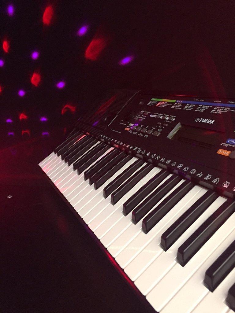 Organ Yamaha PSR-E263